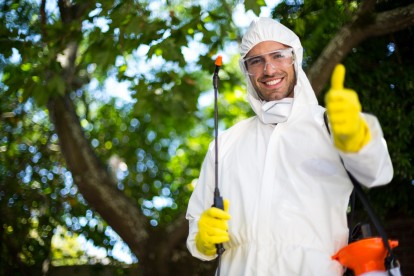 Pest Control in Dagenham, RM8, RM9, RM10. Call Now 020 8166 9746