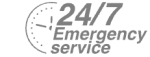 24/7 Emergency Service Pest Control in Dagenham, RM8, RM9, RM10. Call Now! 020 8166 9746